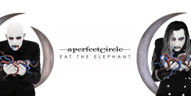 aperfect-circle-eat-the-elephant-feature.jpg